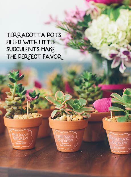 terracotta pots filled with little succulents make the perfect favor
