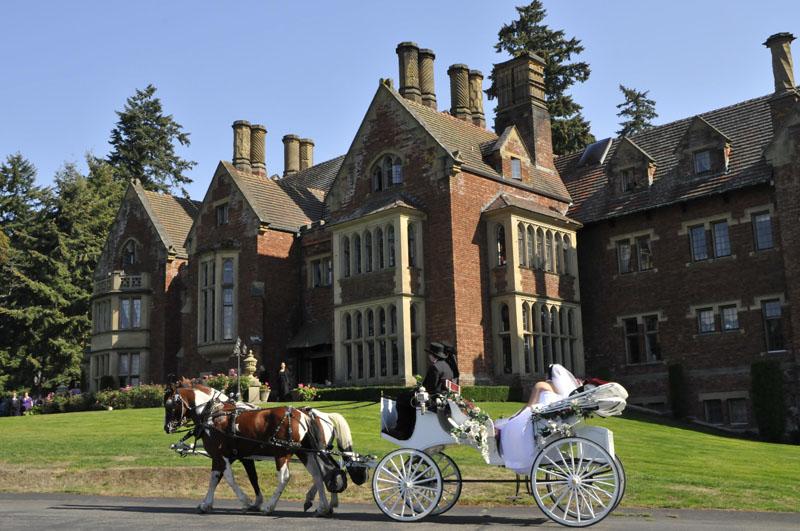 Fairy Tale Wedding - Horse Drawn Carriage