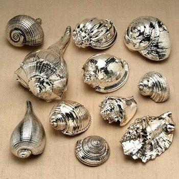 indulgy sea shells spraypaint