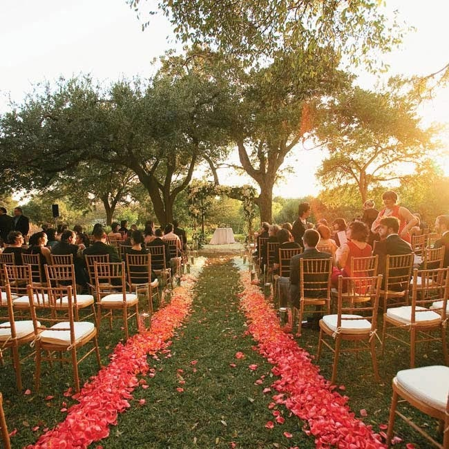 Ombre Wedding Aisle Runner with flower petals - weddingfor1000.com
